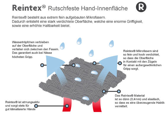 Reintex
